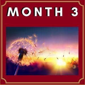 Month-3-Image